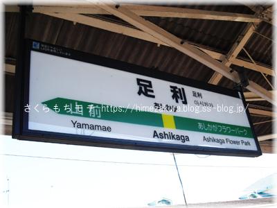 01ashikaga_top.jpg
