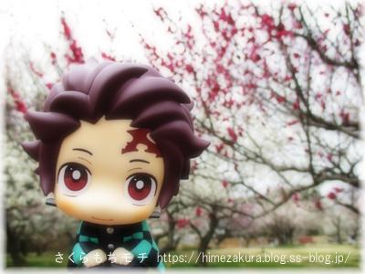 03tanjiro_top.jpg