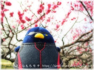 06chun_top.jpg