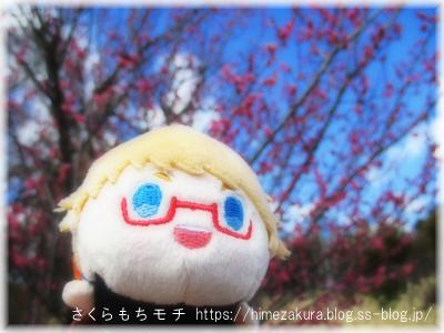 13hakata_top.jpg