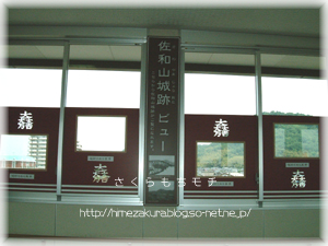 2_02sawayamaview.jpg