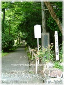 2_08iriguchi.jpg