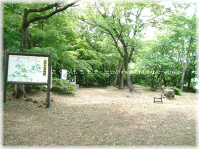 2_10sawayama.jpg