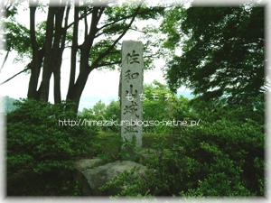 2_11sawayama.jpg