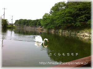 2_22hakutyo.jpg
