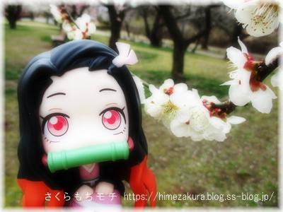 38nezuko_top.jpg