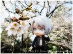 11gaku_top.jpg
